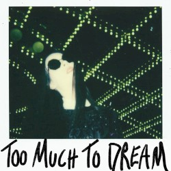 Too Much to Dream by Allie X
